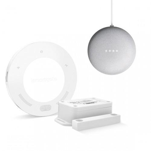 ismartgate Standard Lite Gate + Google Nest Mini