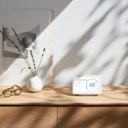 Google Nest Hub auf einem Holzregal neben pflanze