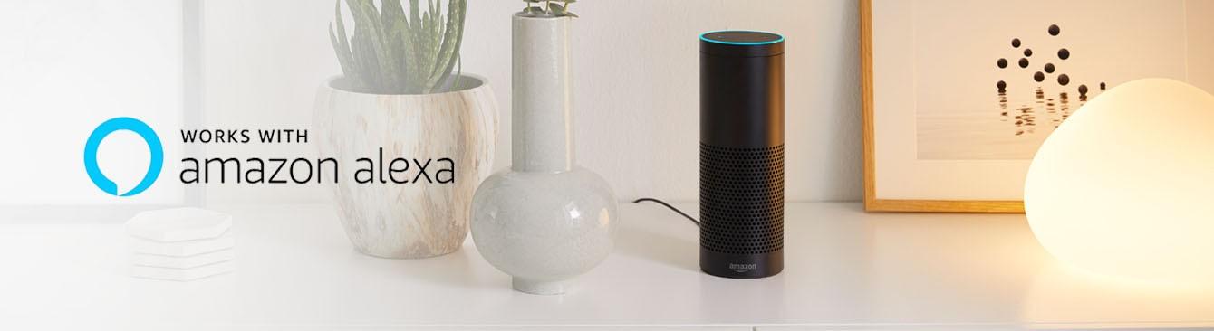 Amazon Alexa Echo auf Sideboard neben Vasen und Philips Hue Smartlampe