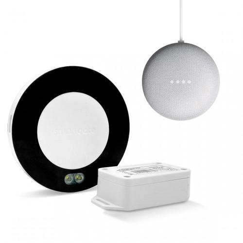 ismartgate Standard Pro Garage + Google Nest Mini