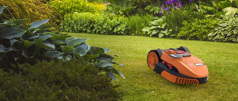 Smarter Worx Mähroboter in Garten