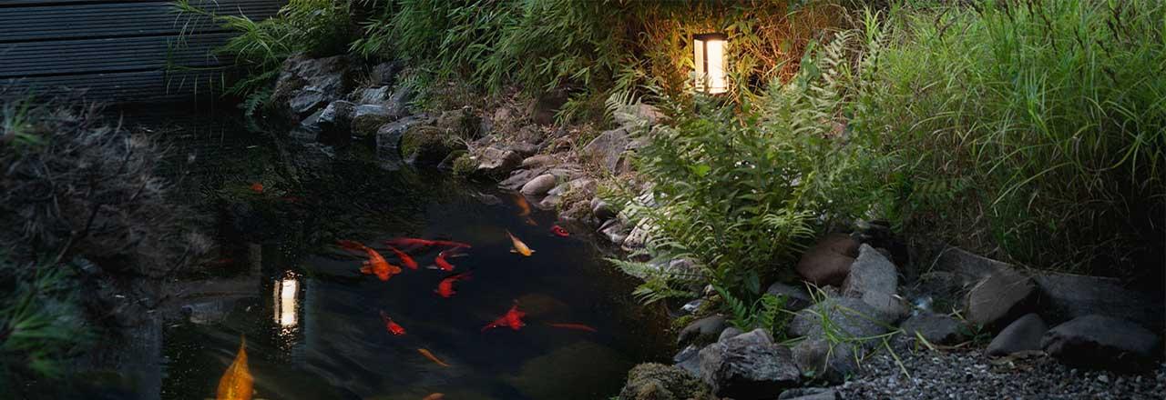 Teich mit Fischen und smarter Gartenbeleuchtung